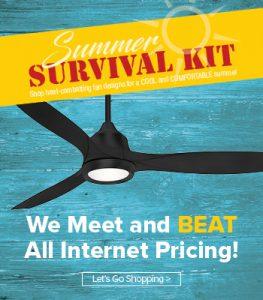 Summer Survival ceiling fan sale